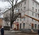 Евгений Авилов: «Кронирование делает город светлее»