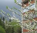 21 мая в Туле облачно и до +20