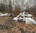 Ртутные лампы и отходы швейного производства  обнаружены в лесу под Кимовском