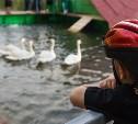 Зооуголок Центрального парка пополнился новыми питомцами
