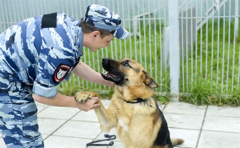 В Новомосковске служебная собака помогла задержать подозреваемого