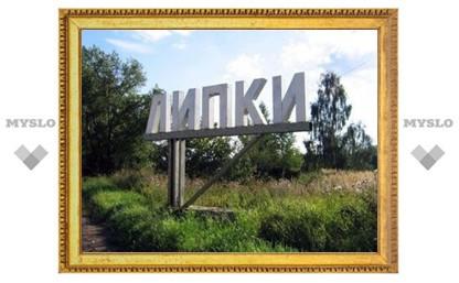 В Липках Тульской области проголосовал самый пожилой избиратель поселка