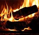 Житель Алексина во время розжига костра случайно сжег свою знакомую