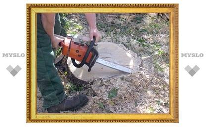 Под Тулой оштрафовали лесоруба