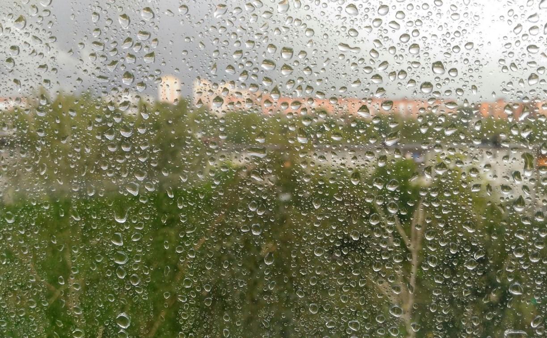 В воскресенье в Тульской области продолжатся дожди