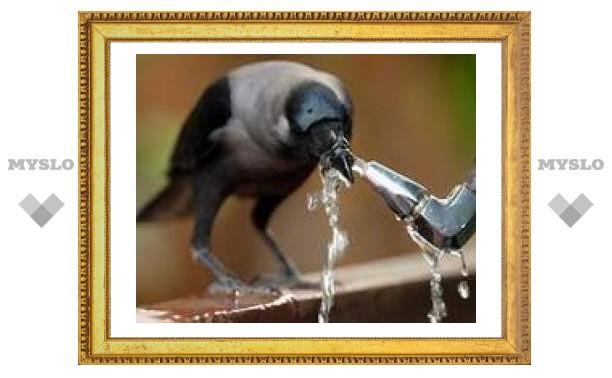 Суд заставил туляка чинить водопровод