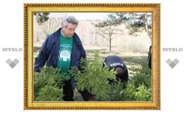 Депутаты Тульской областной Думы посадили в Ясной поляне елки