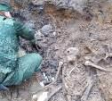 В Тульской области из массового захоронения подняли останки 136 солдат