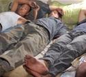 Туляк прописал в своей квартире девятнадцать граждан Узбекистана
