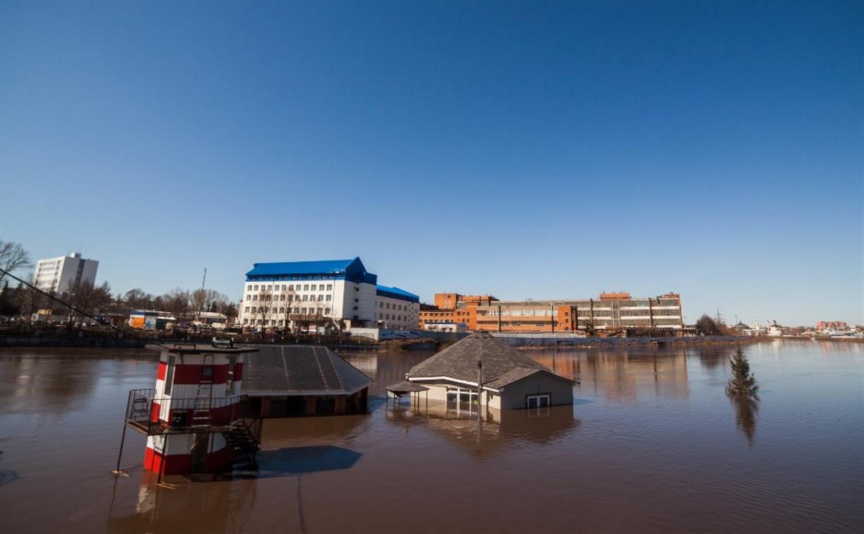 Наихудший сценарий: в Тульской области во время паводка затопит 14 мостов и два частных сектора