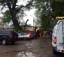 В Туле упавшая ветка дерева повредила две иномарки