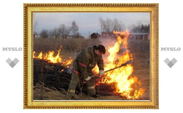 В Туле горят леса и поля