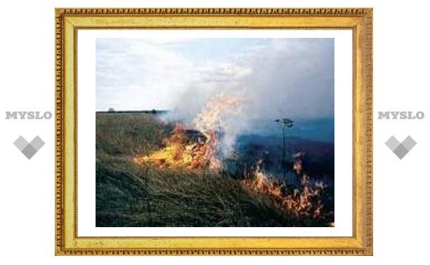 В Тульской области горит трава