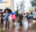 Погода в Туле 29 июня: низкое давление, дождь и ветер