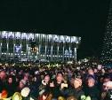 Тульские новогодние гуляния посетили 250 тысяч человек