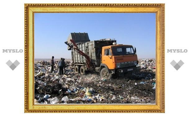 Экологическое состояние Тульской области близко к критическому