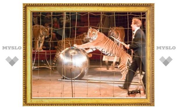 В Тулу едут суматранские тигры