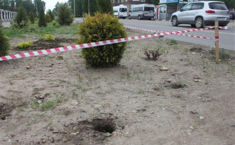 В Алексине неизвестные выкопали саженцы с аллеи в честь 70-летия Победы