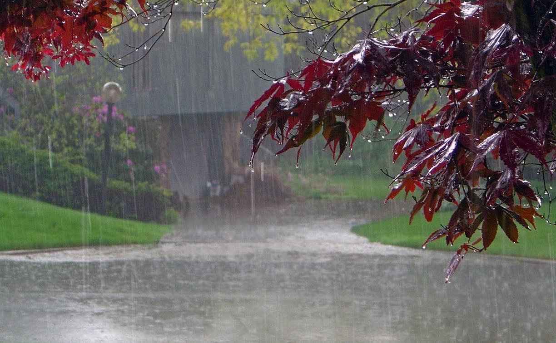 Погода в Туле 29 мая: сильный дождь, грозы и летнее тепло