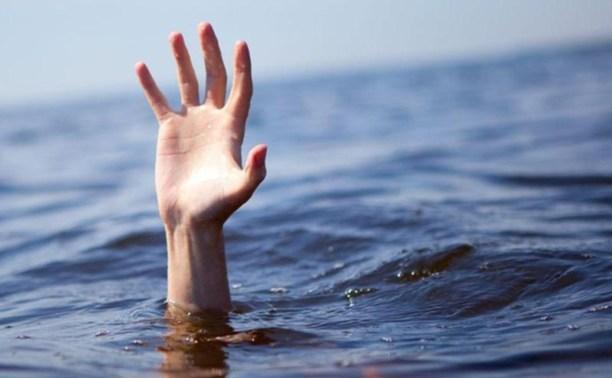 В Тульской области утонули две девочки