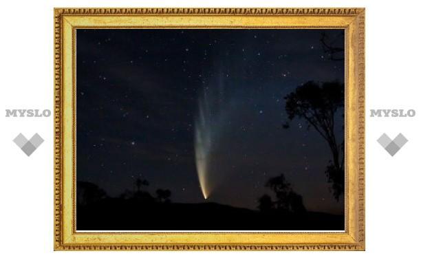 Астрономы определили самую большую комету