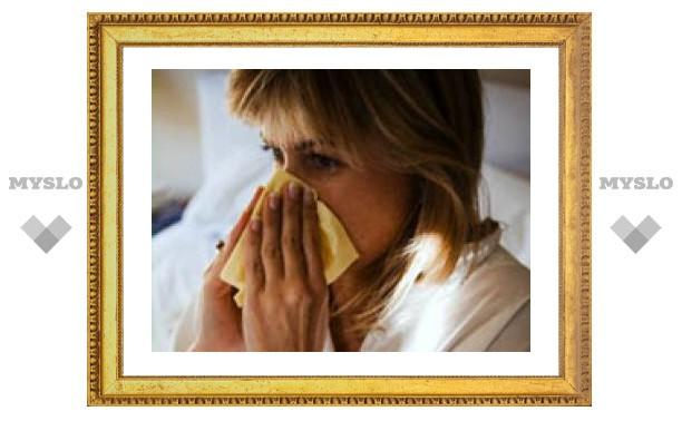 Эпидемии гриппа в Туле пока нет