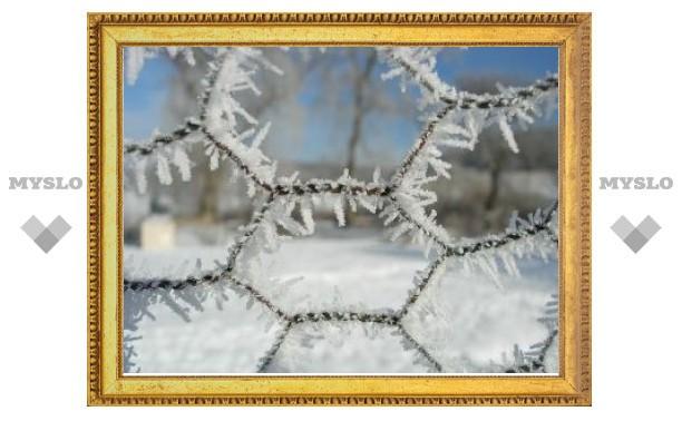 Мороз защитит россиян от второй волны гриппа