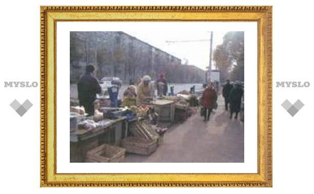 В Туле объявили войну придорожной торговле