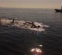 Тульские пловцы-марафонцы не затерялись на открытой воде
