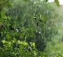 Погода в Туле 26 июня: тепло, возможен небольшой дождь