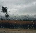 Погода в Туле 22 сентября: небольшой дождь, сильный ветер и до +11