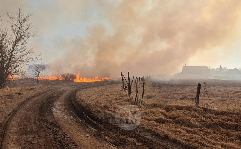 В Федоровке огонь с горящего поля едва не перекинулся на дома