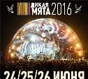 Фестиваль «Дикая Мята» в 2016 году состоится 24-26 июня