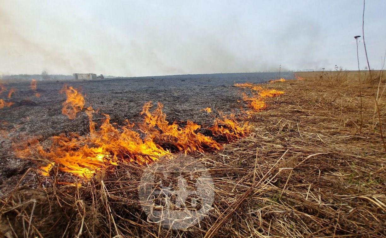 МЧС предупреждает туляков о высоком классе пожароопасности