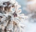 Погода на выходные в Туле: облачно и снежно