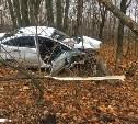 Под Тулой Ford Fiesta вылетел с дороги в лесополосу: пострадал водитель