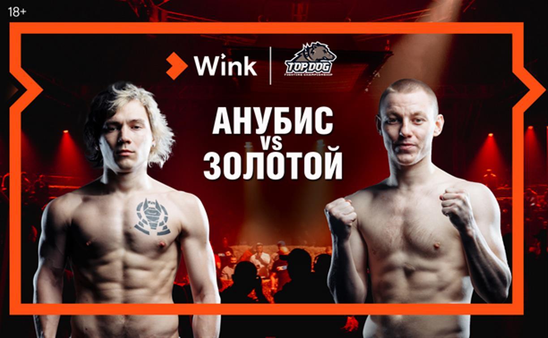 16 апреля Wink эксклюзивно покажет турнир кулачных боев TOP DOG