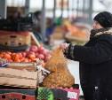 В Туле открылась сельскохозяйственная ярмарка