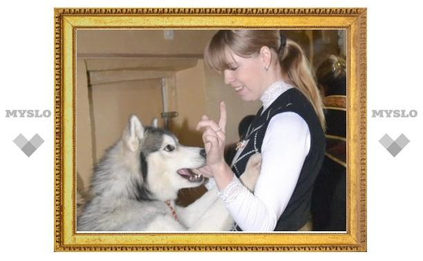 Лучшей собакой России стала хаски по кличке Боня из Тулы