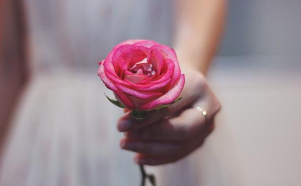 На «Театральном дворике» тулякам раздадут кремлевские розы