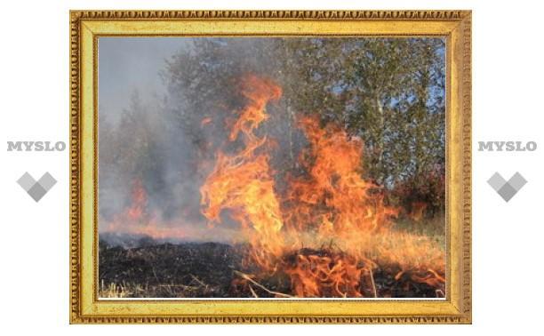 Тульская область готовится к летним пожарам