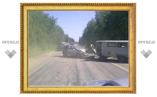 Под Тулой столкнулись микроавтобус и минивэн - есть пострадавшие