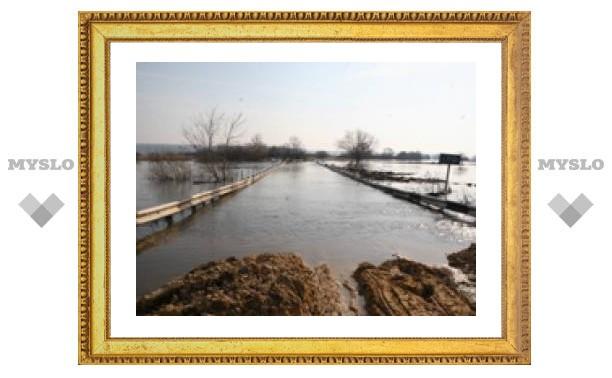 В Тульской области подтопило мосты