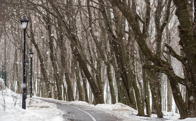 Погода на 18 марта: в Туле пасмурно и мокрый снег