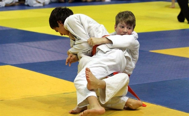 В Туле пройдут соревнования по дзюдо, посвящённые памяти юных героев