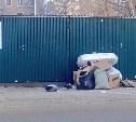 В Туле «магнитная» контейнерная площадка зарастает мусором