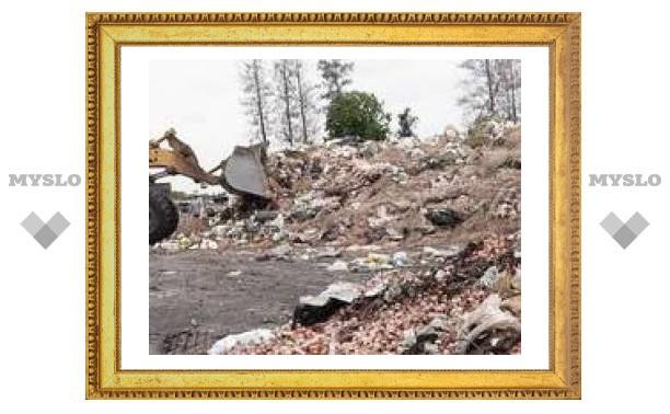 В Туле негде складировать мусор