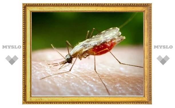 Тульский Роспотребнадзор опроверг слухи о появлении в регионе малярии
