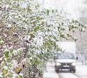 Туляки встретили первый снег