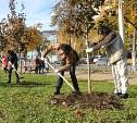 «Зелёный город»: тульские студенты реализовали свой экологический проект